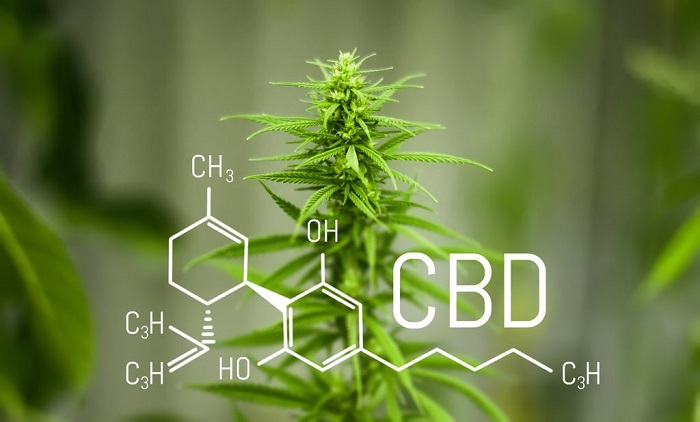 CBD: What is it and how can it be used For Effectiveness?