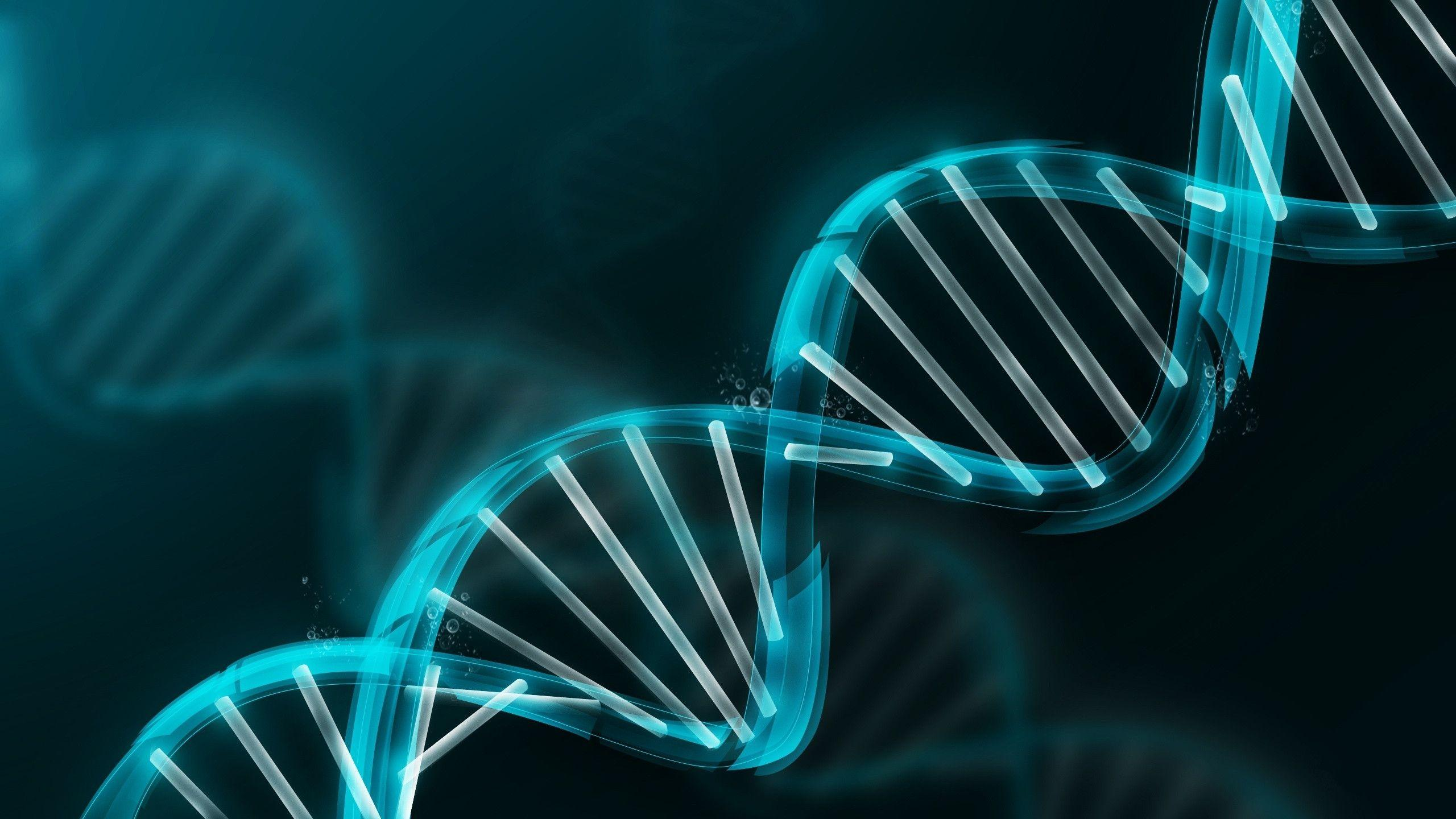 Essential Things You Immediately Need to Do with Your DNA Matches